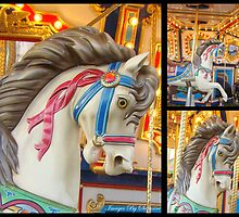 I Love The Carousel! by Susan Vinson