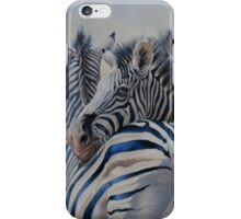 360 Degree Zebras iPhone Case/Skin