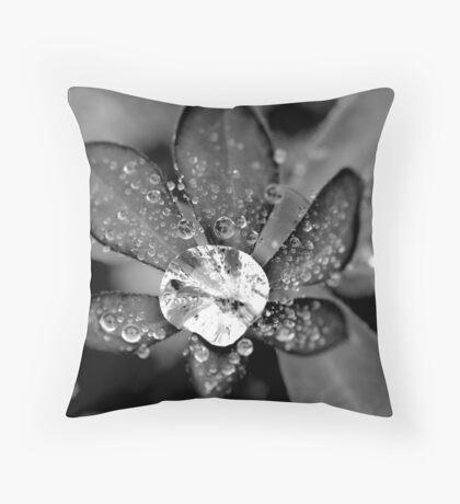 Lupin Diamond Throw Pillow
