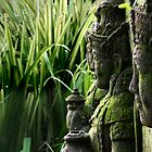 Indonesia 2 - Gardians of the Rice Fields by Normf