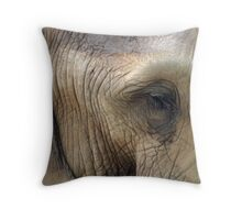 The eye of memory Throw Pillow
