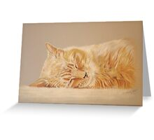 Henry - Sleeping Greeting Card