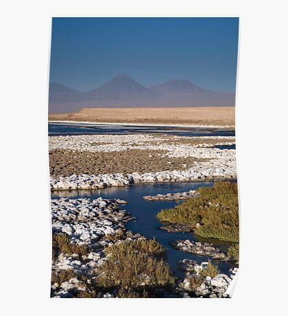 Licancabur volcano from Cejar Pond, Atacama Desert, Chile Poster
