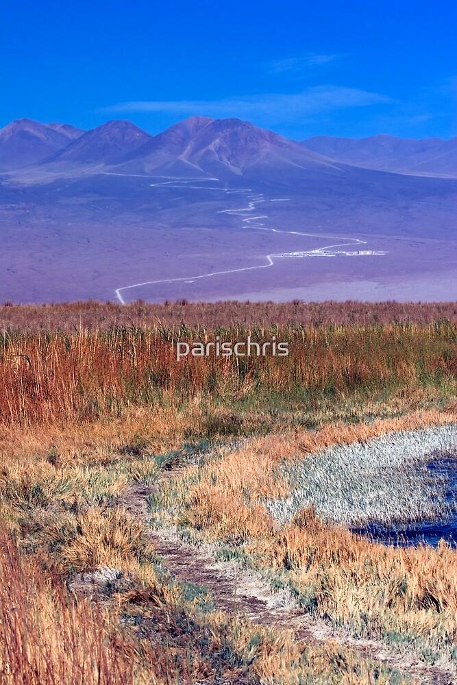 Cejar Pond by parischris