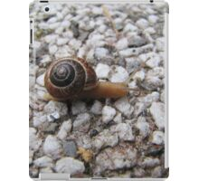 cool snail on the path iPad Case/Skin