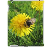 Bumblebee with a lot of pollen on the legs iPad Case/Skin