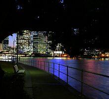 Brisbane By Night  by Nickie