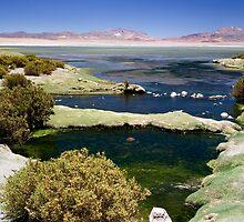 Stunning Tara Lake, Atacama Desert, Chile by parischris