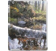 magic forest from Sweden iPad Case/Skin