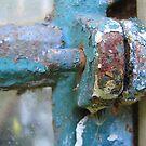Rusty in blue by Hans Bax