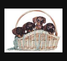 Four dachshund puppy in a basket Kids Clothes