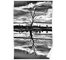 Meditation (Monochrome) - Wonga Wetlands , Albury NSW - The HDR Experience Poster