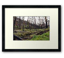 Valley of Regeneration Framed Print