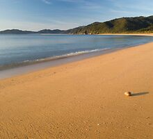 Totaranui Beach, Abel Tasman National Park 6 by Paul Mercer