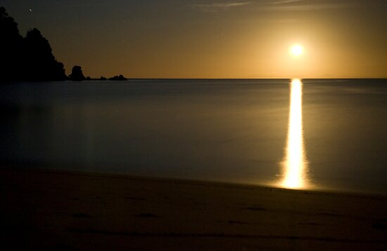 Totaranui Beach moonrise by Paul Mercer