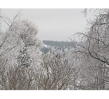 winter country in Northern Sweden Photographic Print