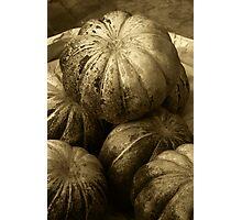 Pumpkins (Sepia) Photographic Print