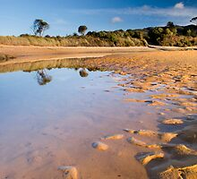Totaranui Beach estuary 1 by Paul Mercer