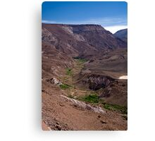 View to Rio Grande de Atacama Canvas Print