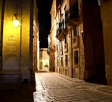 Night Walk by Ronald cox