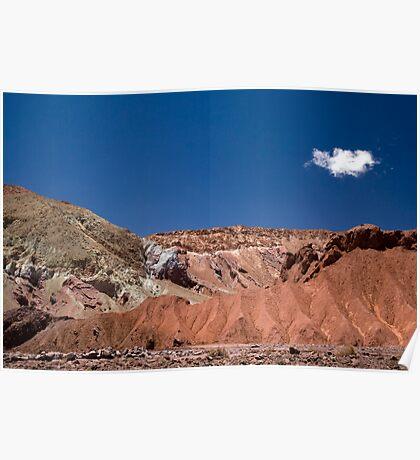 Mantancilla de Atacama, Atacama Desert, Chile Poster
