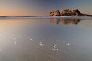 Wharariki Beach 3 by Paul Mercer