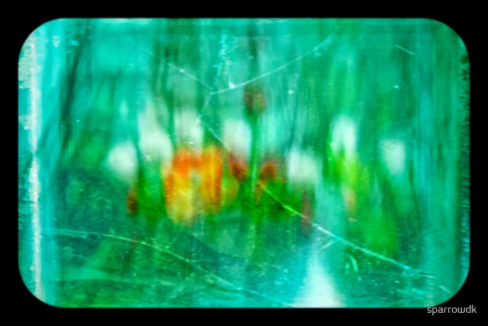 flowers by sparrowdk