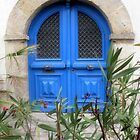 Blue Door by Pamela Jayne Smith