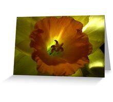 Daffodil Light Greeting Card