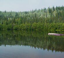 Serenity by Linda Bianic