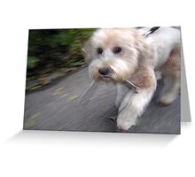 HURRY UP, I DON'T WANT TO LOSE MY STICK! Greeting Card
