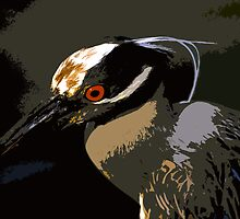Yellow Crowned Night Heron work # 7 by David Lee Thompson