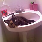 Sitting in the Sink by Leeannarose