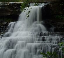 Brandywine Falls by Expressions &  Reflections