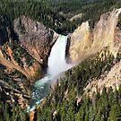 Lower Falls (2)  by Teresa Zieba