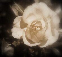 Romantic Memorie by Journeysinphoto