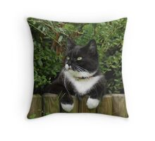 This is Tussi Throw Pillow
