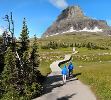 Protecting the Alpine Environment in Glacier National Park, Montana, USA by Dave Martsolf