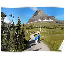 Protecting the Alpine Environment in Glacier National Park, Montana, USA Poster