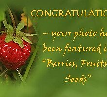 3rd Place winner in the Berries, Fruit & Seeds Feature Banner Challenge by Stephen Thomas