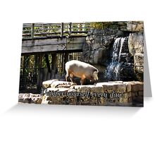 Pamper yourself every day! Greeting Card