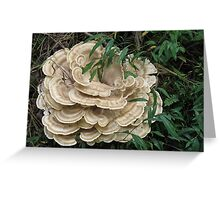 Mushroom Flower Greeting Card