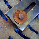 Rusty Bolt and Washer by Dana Roper