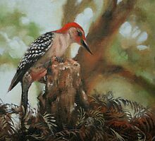 Red Bellied Woodpecker by Linda Eades Blackburn