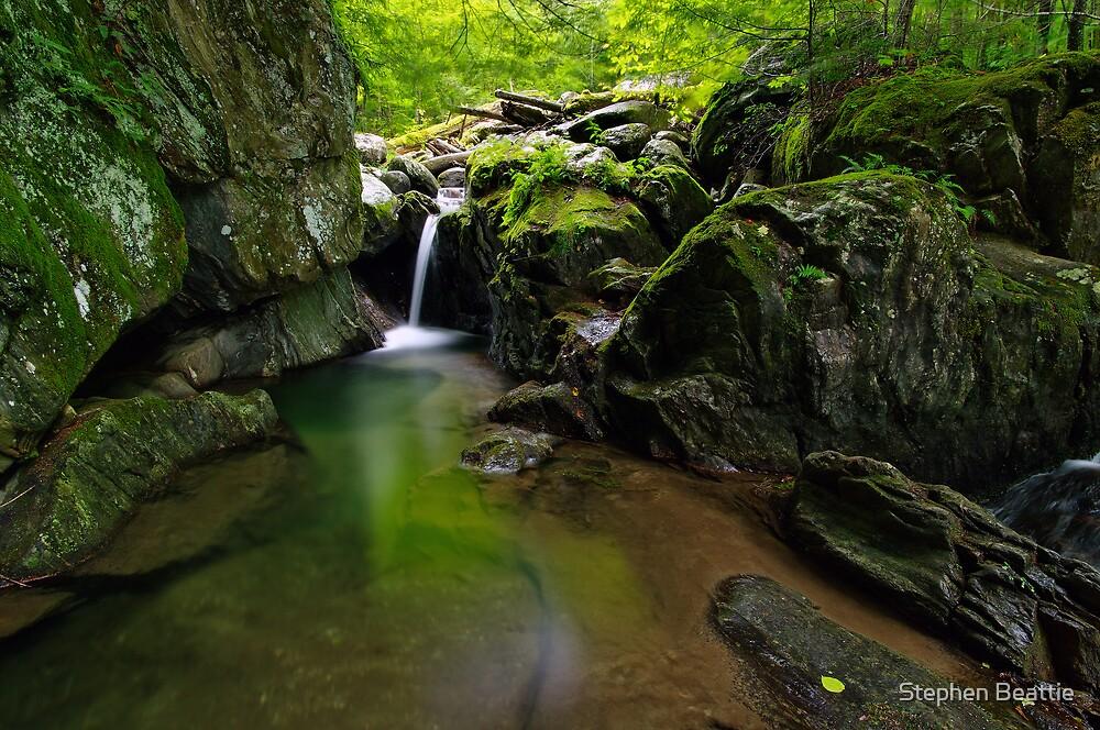 Honey Hollow Falls by Stephen Beattie