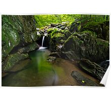 Honey Hollow Falls Poster