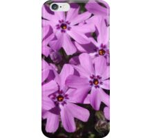 Phlox Flowers Abstract iPhone Case/Skin