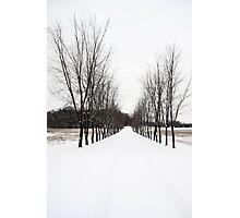 Winter comes Photographic Print