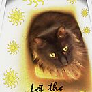 Let The Sun Shine In by Terri Chandler