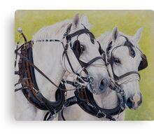 A working pair Canvas Print